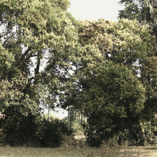 Vandy Rattana, MONOLOGUE, 2014. Vidéo. Coproduction : Jeu de Paume, Paris et CAPC musée d'art contemporain de Bordeaux. Courtesy de l'artiste © Vandy Rattana