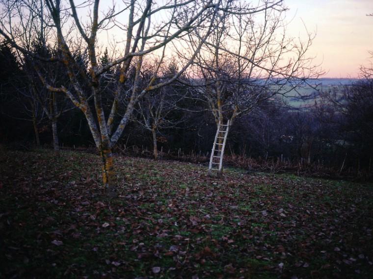 Jean-Luc Moulène, Fénautrigues, décembre 1998, 80 x 95 cm, galerie Chantal Crousel, ADAGP