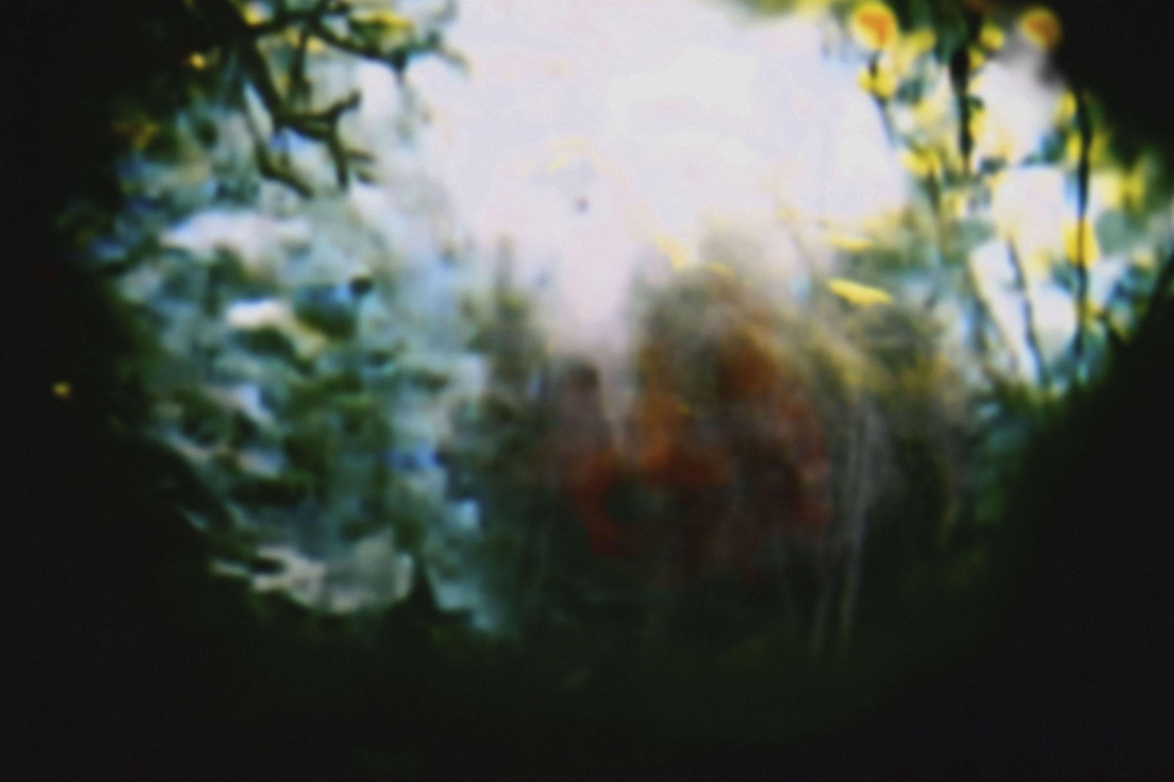 Estefanía Peñafiel Loaiza, Un air d'accueil, photographie couleur, 2013 (en cours). Courtesy Galerie Alain Gutharc.