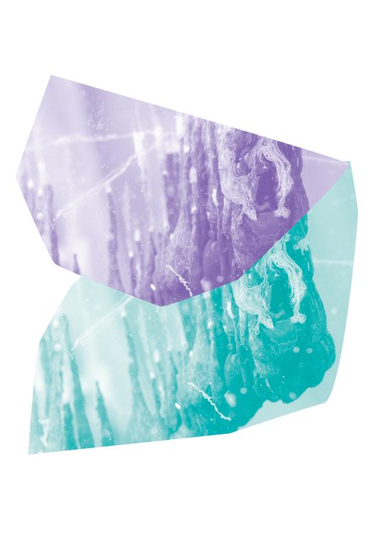 Présage, tranche, détail, 2015. Paysages chimiques en évolution ralentie dans cuve en verre. Courtesy Hicham Berrada et kamel mennour, Paris.